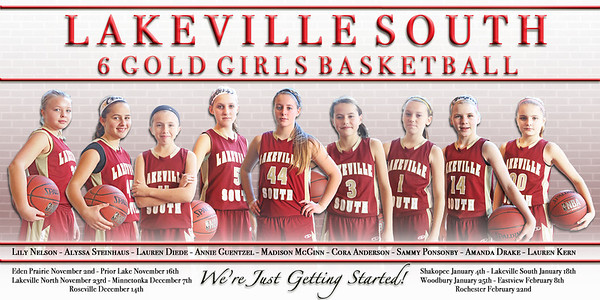 Cougars 6A Girls Basketball 2013