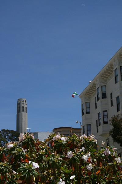 San Francisco (Coit Tower)