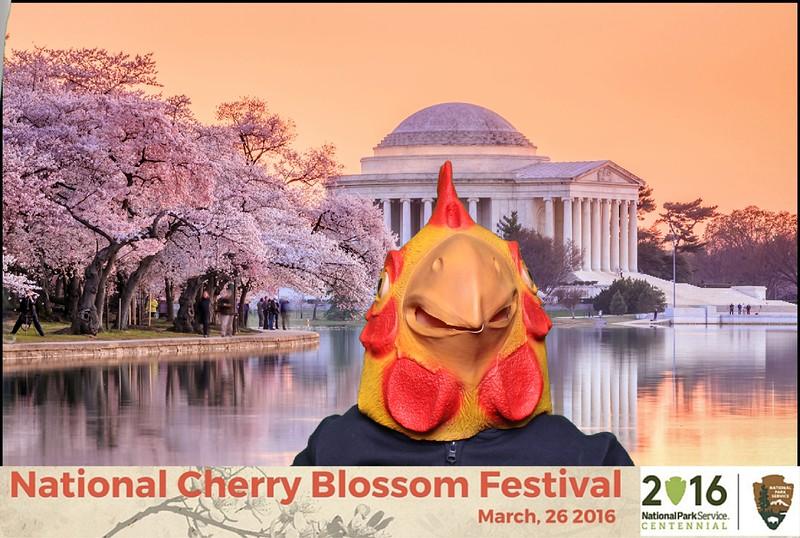 Boothie-NPS-CherryBlossom- (94).jpg