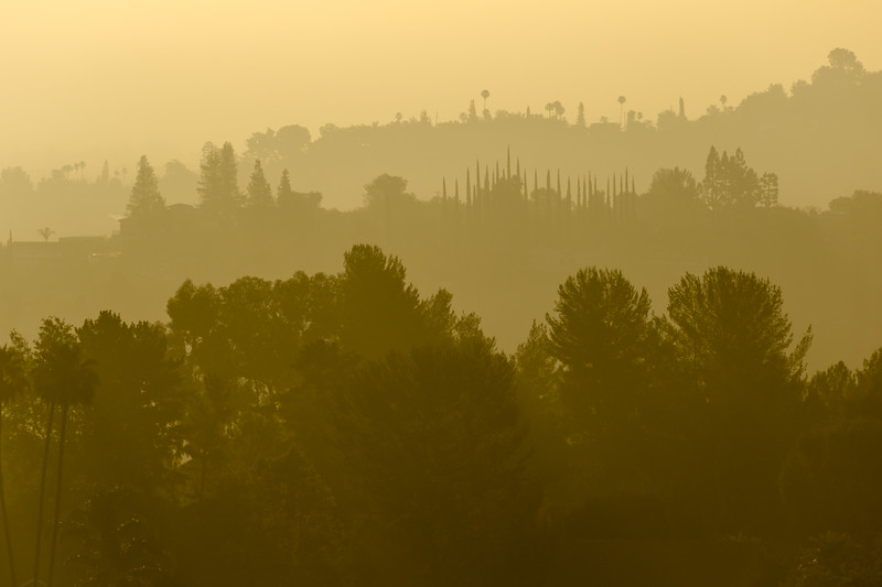 Silhouetted layers of trees and homes in suburbia Los Angeles - Top of Topanga Overlook, Topanga, California, United States (US)