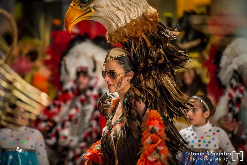 carnival13_sun-1462.jpg