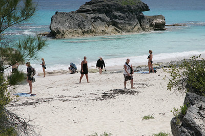 Horseshoe Beach , Bermuda