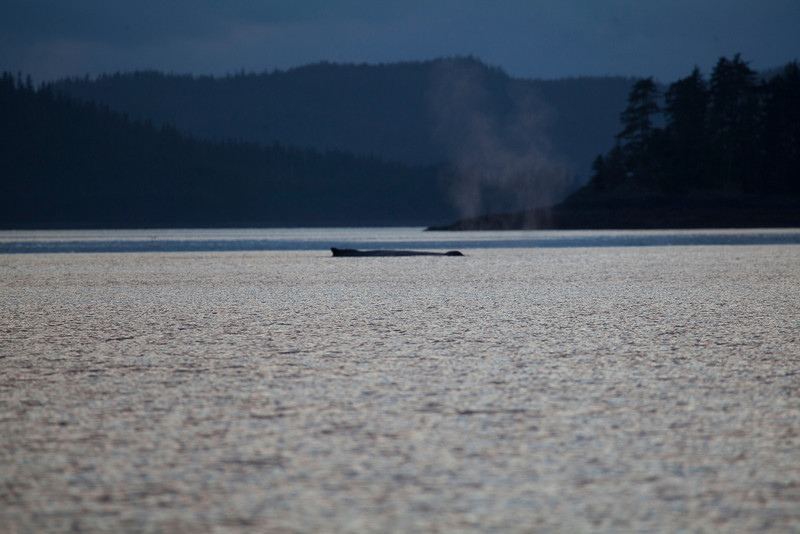Alaska-155.jpg