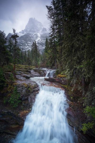Looming Chief (Portrait) || Virginia Creek Cascades