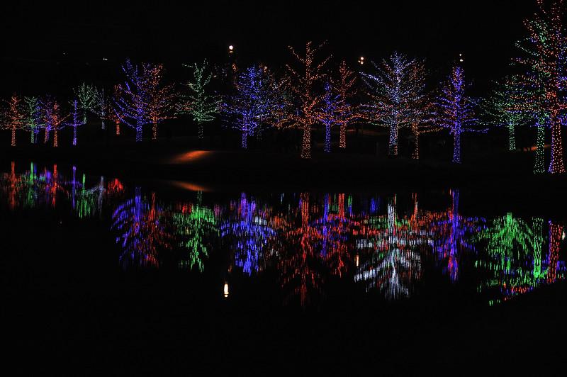 Christmas2019-834.JPG