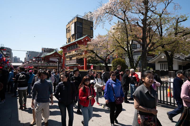 20190411-JapanTour-4015.jpg