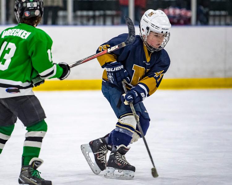 2019-02-03-Ryan-Naughton-Hockey-64.jpg