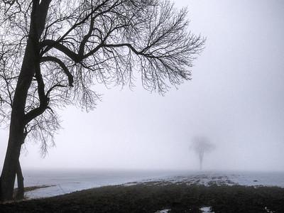 Paysage n/b / Landscape b&w