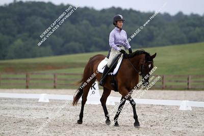 Blumenthal Taylor ridingRoad Houseel numero244!