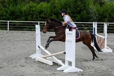 Horses Memorial Day