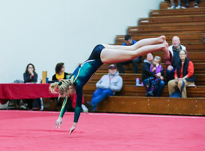 Ballard, Newport and Redmond Gymnastics