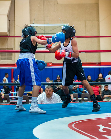 Boxing and Sports