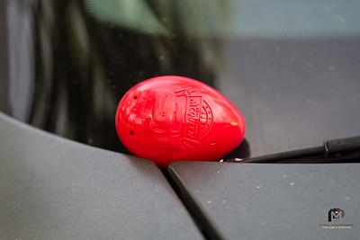 Fam Easter Egg Hunt
