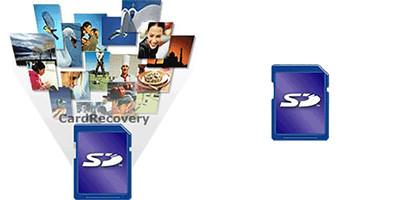 recovery - Copy.jpg