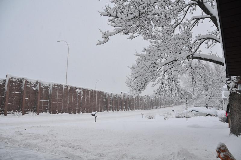 2012-12-09 First Snow of the Year - Sleeding 004.JPG