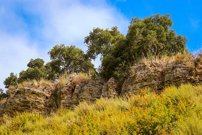 Bob Jone Trail