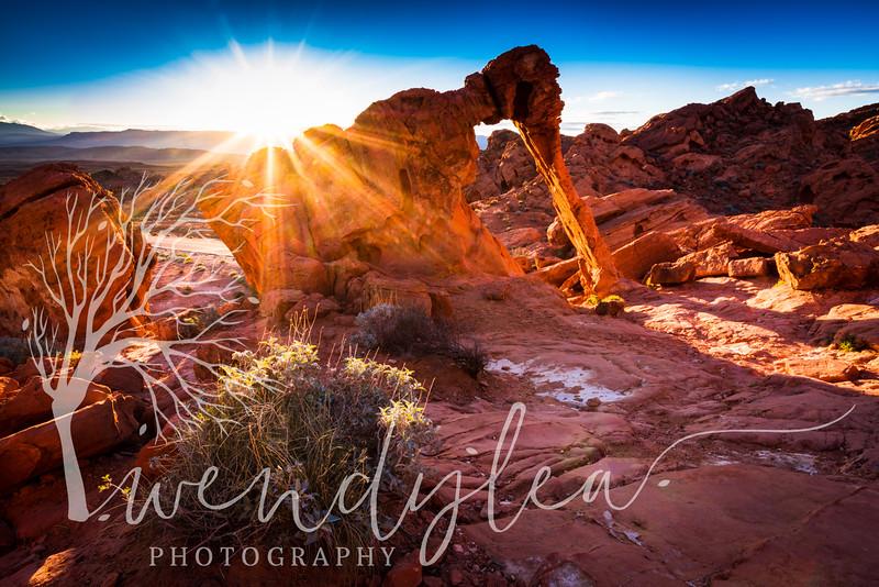 wlc Southern Utah 0217February 23, 2017-42-Edit.jpg
