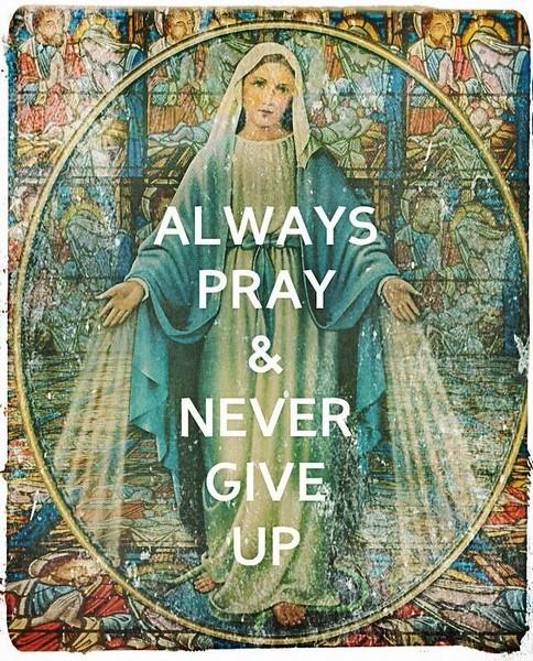 Catholic Memes & MISC