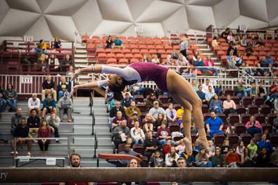 3/1/19, Centenary Gymnastics