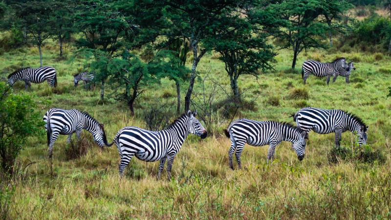 Uganda_GNorton_03-2013-240.jpg