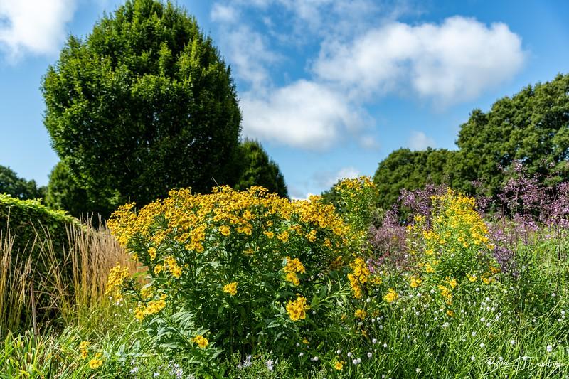 850_Sussex Prairie Gardens-8502648.jpg