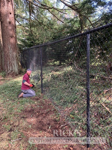 4146 - Black Chain Link Fencing