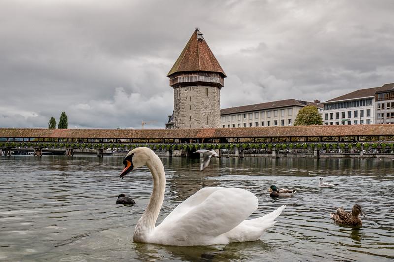 09192017_Lucerne_0196Paris.jpg