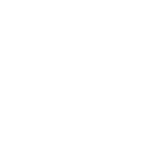 Logotype_PierreBouras_Plan de travail 1 copie 10.png
