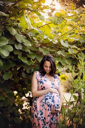 Sophia H Maternity