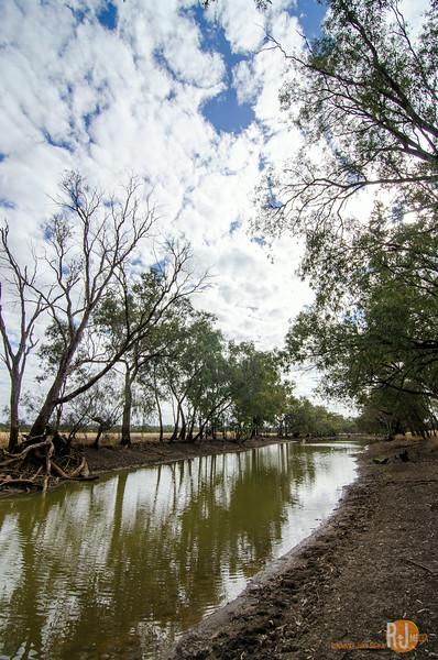 Australia-queensland-charleville-outback-3803.jpg