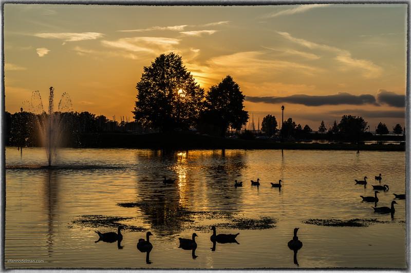 Sunset at Andrew Hayden Park