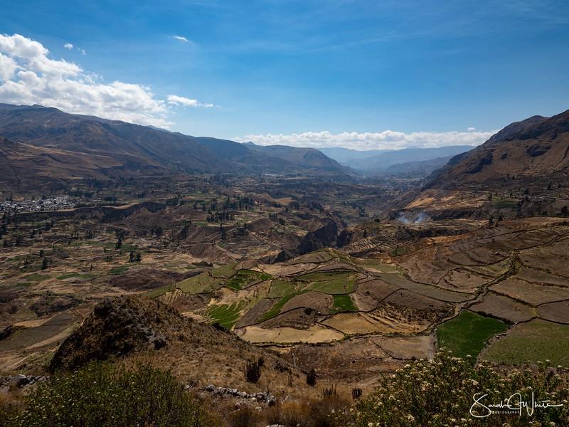 Peru-15102019-611.jpg