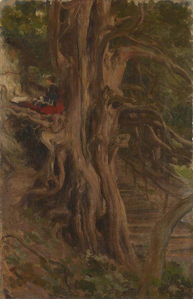 Trees at Cliveden, Frederic