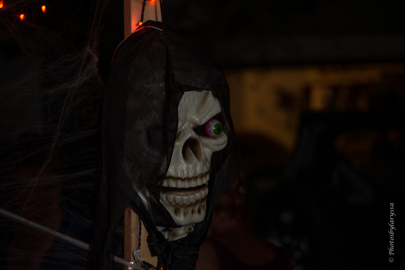 2015 Halloween_LAG0372.jpg
