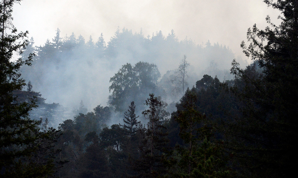 . Smoke filters through the trees in Big Sur, Calif. on Wednesday December 18, 2013. (Photo David Royal/ Monterey County Herald)