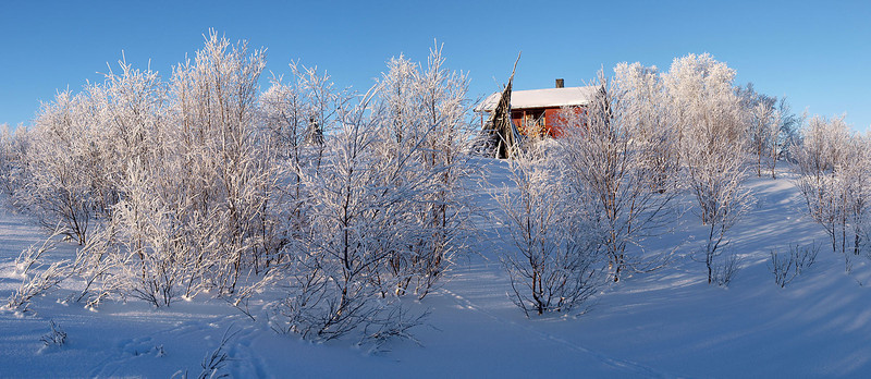 Raised part of the camp was actaully really beautiful with frozen trees, isolated cabins, derelict buildings and all sorts of photogenic clutter. I was busy.