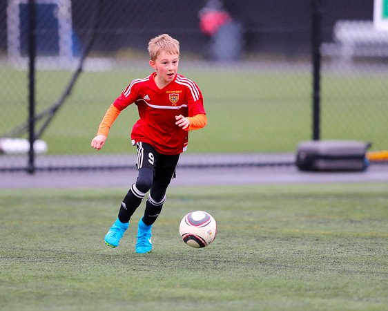 State Cup Pictures - February 4