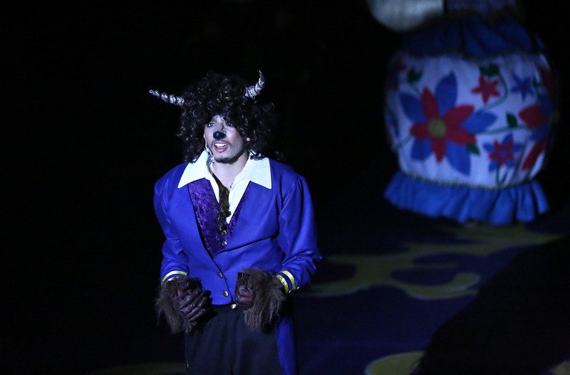 Debbie Markham Photo-Closing Performance-Beauty and the Beast-CUHS 2013-238.jpg