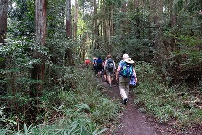 Takisaka-no-Michi Path