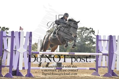 DHJSC Year End at Texas Rose Horse Park (November '19)