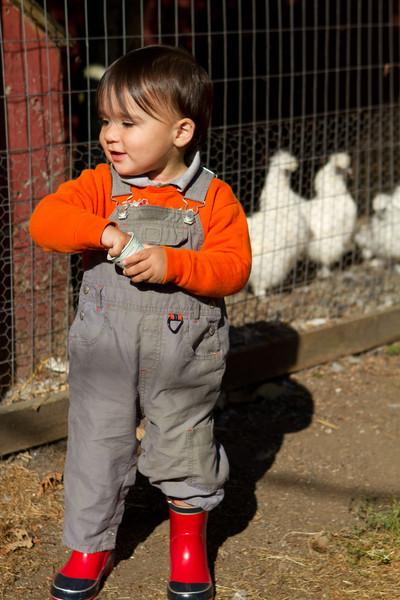 PumpkinPatch2012-35.jpg