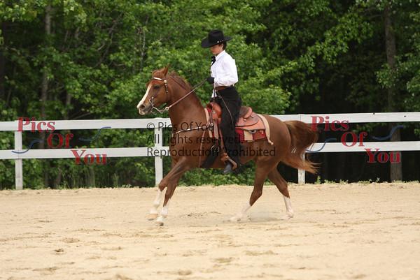 Old Dominion Arabian Horse Association -- May 16-17, 2009 (Wakefield, VA)