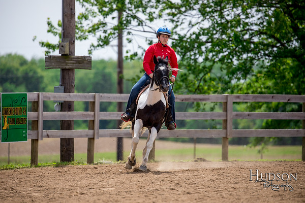 35. Western Working Horse-Pony