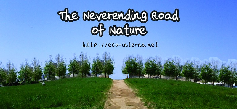 2012, Road of Nature