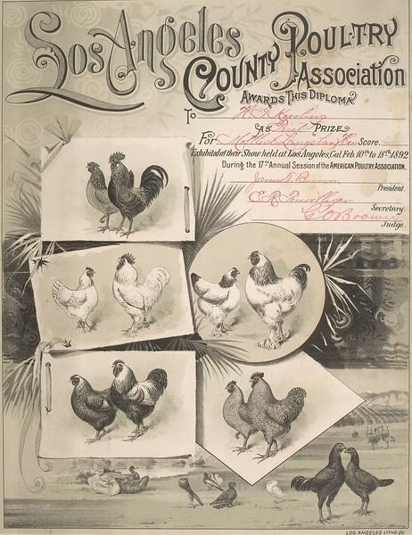 1892-02-LosAngelesCountyPoultryAssociation.bmp