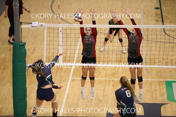 2019 Volleyball Season--High School