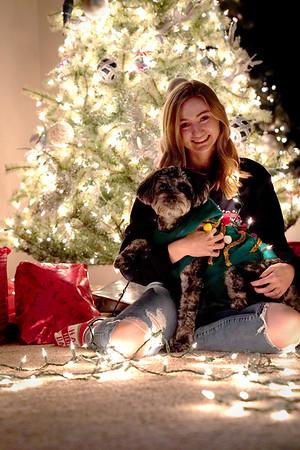 Bailey's 1st Christmas (2020)