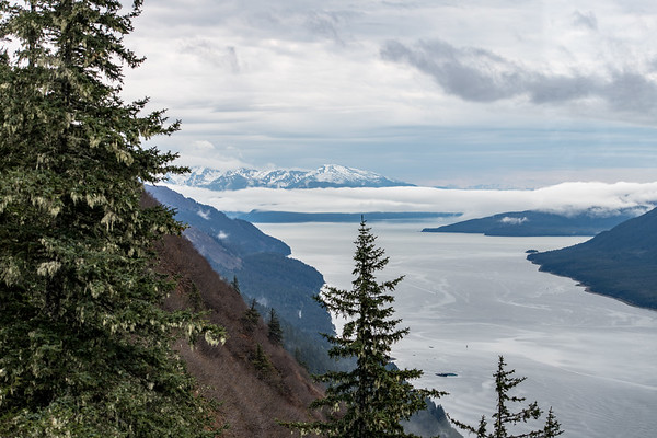 day 6 endicott arm and dawes glacier-484