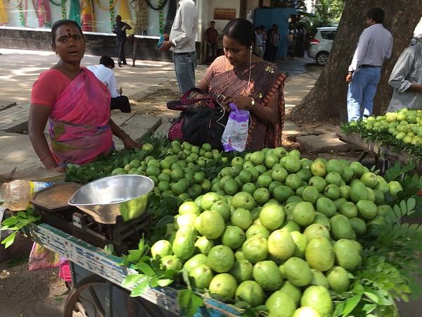 Bangalore Week 2