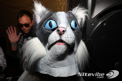 19-10-20, Sun | Disco Katz - Kitty Horror Picture Show @ Natoma Cabana